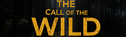 The Call Of The Wild [RP] [FR] [HardCore] - Serveur Dead Matter
